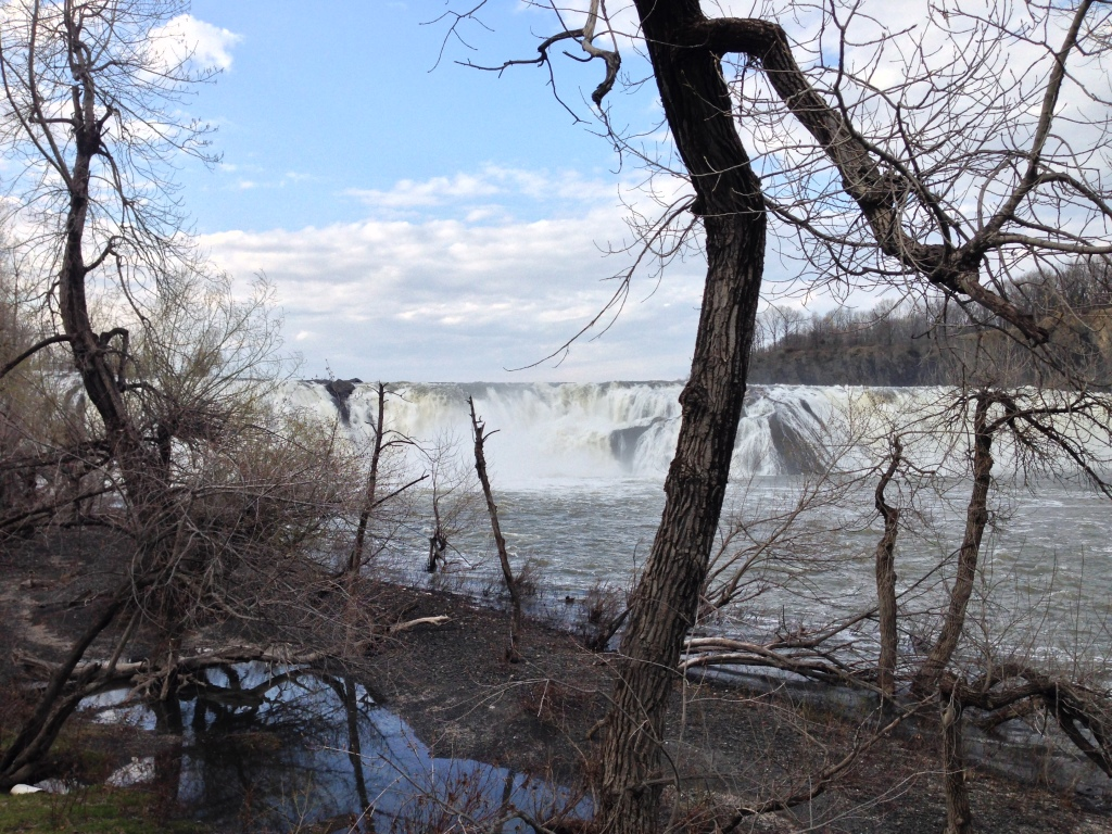 Cohoes Falls - Riverbank view