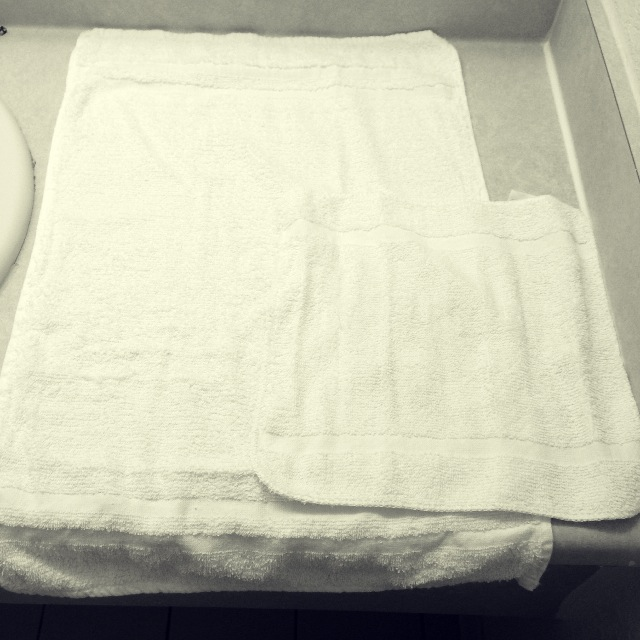 Towel Art Basket : Transcient delights flower basket towel art